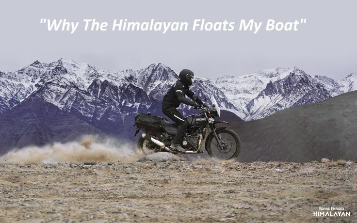 Himalayan-1