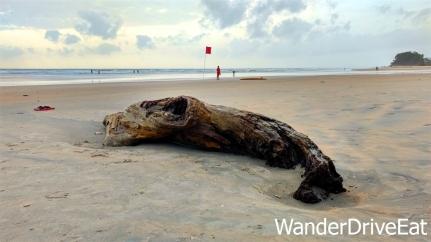Beach-wood