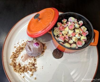 Zeta Hyatt Regency Aunt Anna's Chocolate Mousse